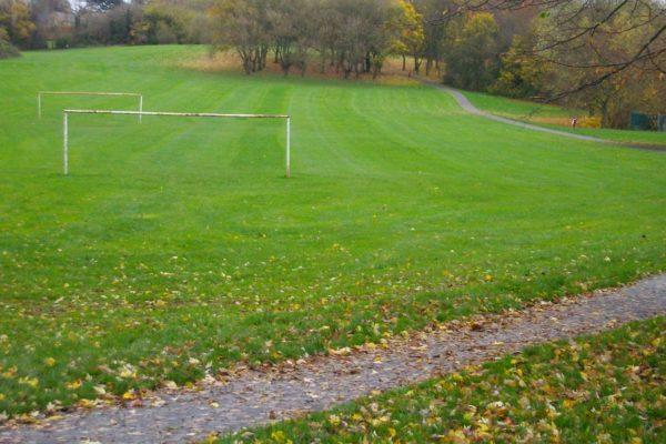 Football field little billing